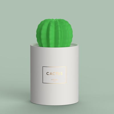 Cactus Soft Light Humidifier 5 - Sneapy
