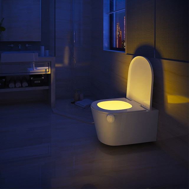 Smart Toilet Light 1 - Sneapy