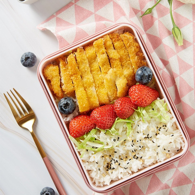 Electric Steaming Lunchbox 1 - Sneapy