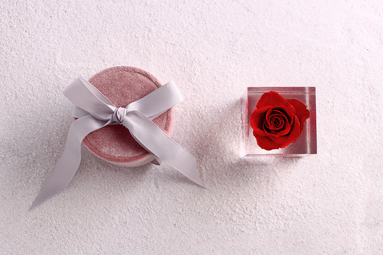 Rose Cube 9 - Sneapy