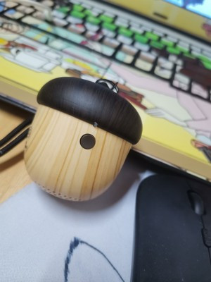 Walnut Mini Speaker photo review
