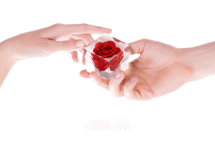 Rose Cube 6 - Sneapy