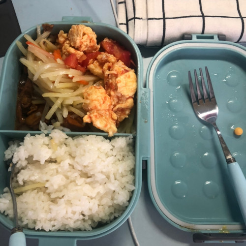 Oho Lunch Box photo review