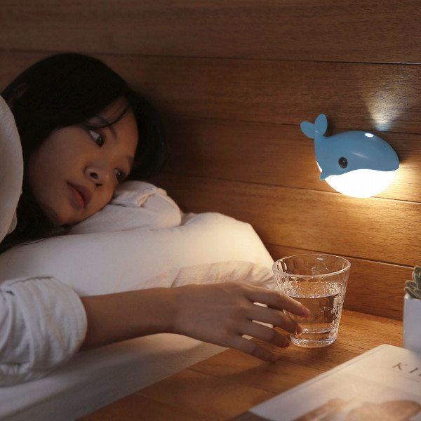 Blue Whale Induction Light 6 - Sneapy