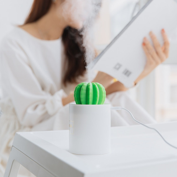 Cactus Soft Light Humidifier 2 - Sneapy